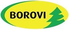logo_borovi